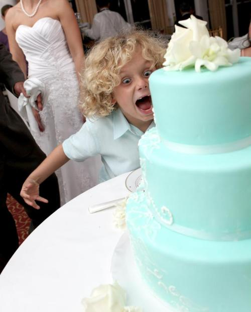 Wild about Wedding Cakes!